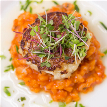 Lobster Risotto Crab Cake at the Hilton Wilmington Christiana
